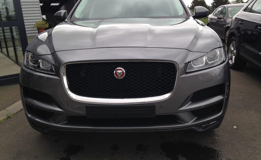 jaguar 697
